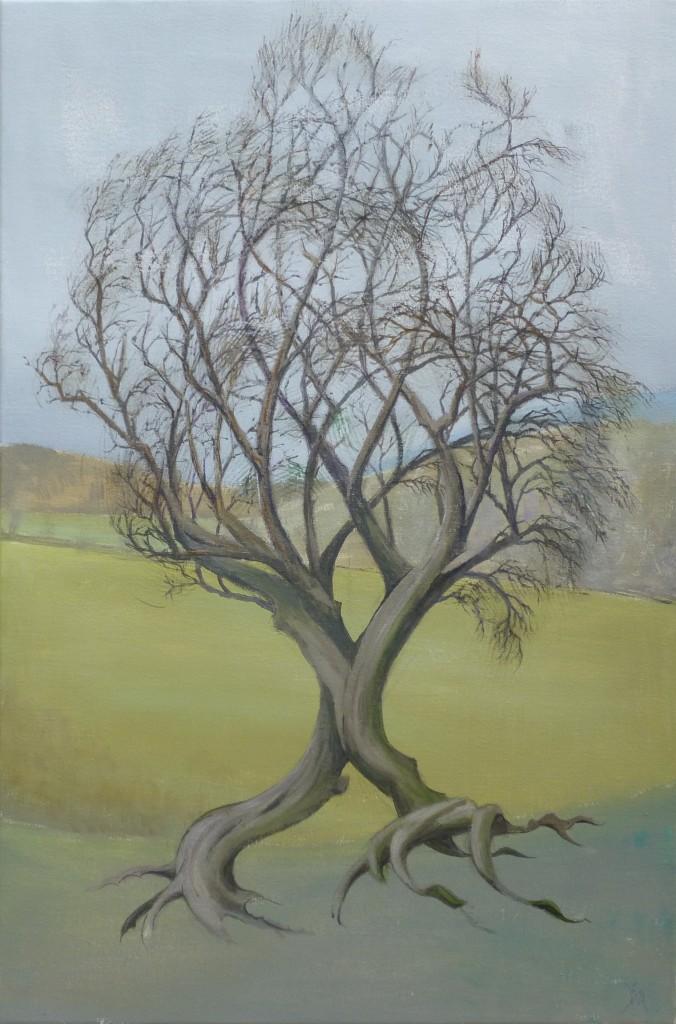 John Allcock. Tree
