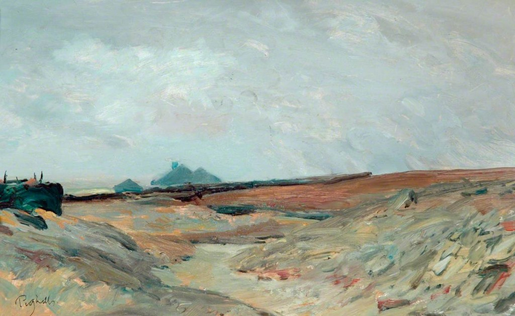 Pighills, Joseph; Far Enfield, Stanbury Moor; Bradford Museums and Galleries; http://www.artuk.org/artworks/far-enfield-stanbury-moor-23089