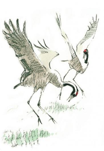 John Busby cranes