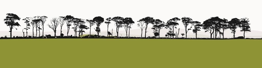 jacky-al-samarraie-northumberland-landscape