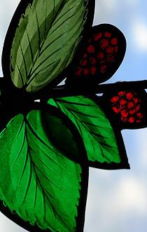 COOKE, Jonathan. Blackberries